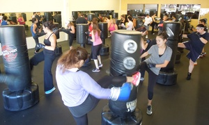 MAX Martial Arts & Fitness: 5 or 10 Kickboxing Classes at MAX Martial Arts & Fitness (Up to 90% Off)