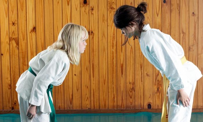 PRO Martial Arts - Toronto: 6 or 10 Adult or Children's Martial Arts Classes with Uniform at PRO Martial Arts (69% Off)