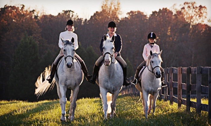Saddle Ridge Riding Center - Mahwah: Trail Rides, Riding Lessons, Boarding, or Leasing at Saddle Ridge Riding Center (Up to 53% Off). Five Options Available.