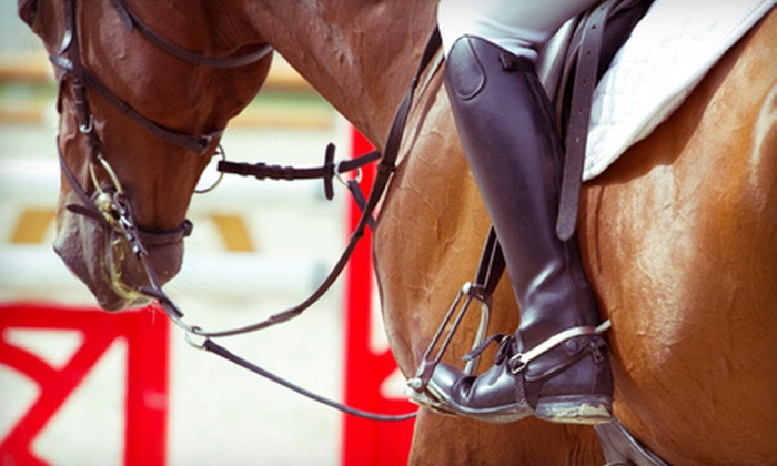 Silver Fox Farms - Dripping Springs-Wimberley: One or Two Horseback-Riding Lessons at Silver Fox Farms in Wimberley (Up to 52% Off)