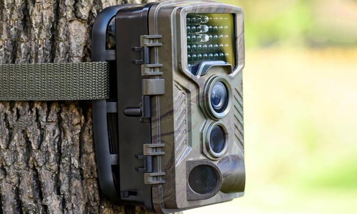 Fotocamera selvatici copertura