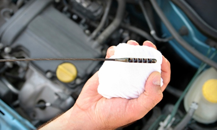 Sophia's Euro Asia Motors - North Fair Oaks: $39 for Synthetic Oil Change, 60-point Inspection and Carwash at Sophia's Euro Asia Motors ($99.94 Value)