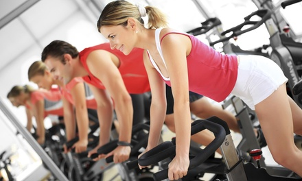 One or Three Months of Road-Bike or Indoor-Cycling Classes at Elite Physique - Kensington (Up to 71% Off)