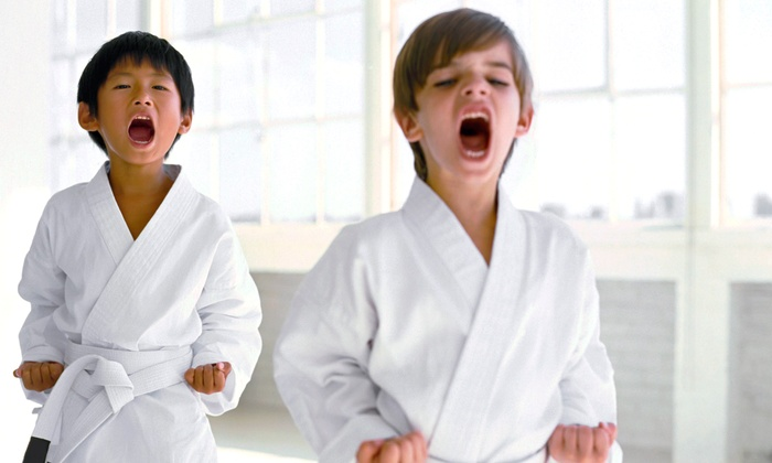 OC Martial Arts & Fitness - Orange: Martial-Arts Lessons for Adults and Kids at OC Martial Arts & Fitness (Up to 63% Off). Two Options Available.