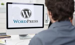 Future Academy: Corso online per l'utilizzo della piattaforma Wordpress (sconto 75%)