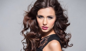 Tracy Castaneda Ridge at City Looks Salon: Hairstyling Services from Tracy Castaneda Ridge at City Looks Salon (Up to 66% Off). Seven Options Available.