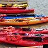 Up to 51% Off Kayak or Paddleboard Rentals