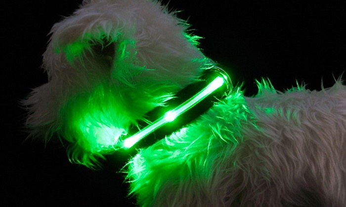 Solar-Powered LED Dog Collars and Leashes: Solar-Powered LED Dog Collars and Leashes from $13.99–$19.99. Free Returns.