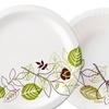 Dixie Paper Bowls or Paper Plates