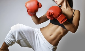 Pro Martial Arts: 15 or 30 Kickboxing Classes at Pro Martial Arts (Up to 78% Off)