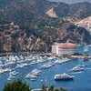 Stay at Historic Hermosa Hotel & Catalina Cottages in Avalon, CA
