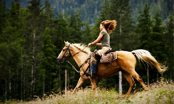 Laughing Pony Rescue - San Diego: One or Two 60-Minute Western Horseback-Riding Lessons at Laughing Pony Rescue (Up to 54% Off)