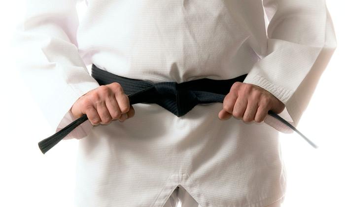 Harrisburg Brazilian Jiu Jitsu and Judo - Lemoyne: One-Month Membership for Kids or Adults Brazilian Jiu Jitsu at Harrisburg Brazilian Jiu Jitsu and Judo (Up to 76% Off)
