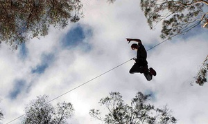 Skyline Eco-Adventures: Haleakala Zipline Tour for One, Two, or Four at Skyline Eco-Adventures (Up to 27% Off)