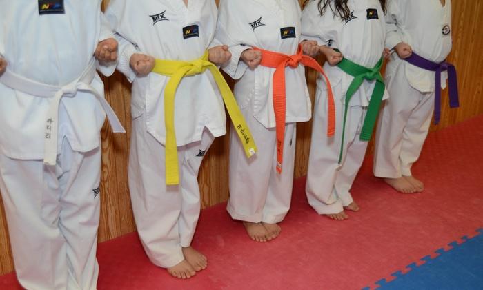 Chang Brothers Taekwondo Academy - Hanover Park: $94 for $209 Worth of Martial-Arts Lessons — Chang Brothers Taekwondo Academy
