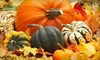 Up to 56% Off Pumpkin-Patch Outings