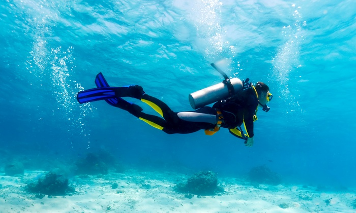 Underworld Scuba & Sport - King Edward: Discover Scuba Class, Bubblemaker Package, or PADI-Seal Package at Underworld Scuba & Sport (Up to 61% Off)
