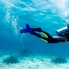 Up to 64% Off Scuba Classes