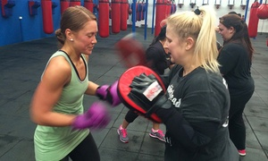 Burn Boxing and Fitness: 4-Week Boxing and Fitness Classes for One ($12), Two ($19) or Four People ($29) at Burn Boxing and Fitness (Up to $460)