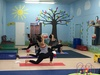 Up to 53% Off at Ace Wellness at Lil Busy Bodies Play Gym