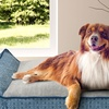Large Deluxe Chaise Lounger Pet Bed