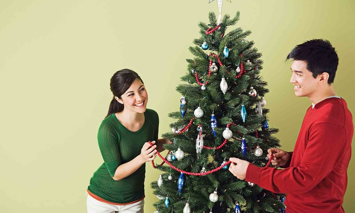 Edgewater Tree Barn - Edgewater: One 6- to 7-Foot Fraser Fir or Douglas Fir Christmas Tree at Edgewater Tree Barn (50% Off)