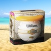 Wilson Endless Summer Volleyball and Air Disc Set