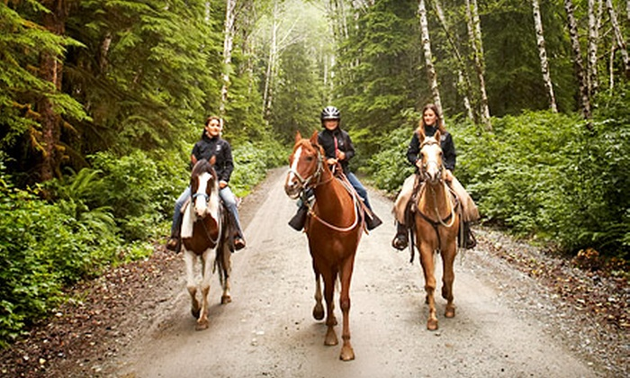 Forest View Farms - Hanover: One-Hour Private Horseback Trail Ride for Two, Four, or Six at Forest View Farms (Up to 51% Off)