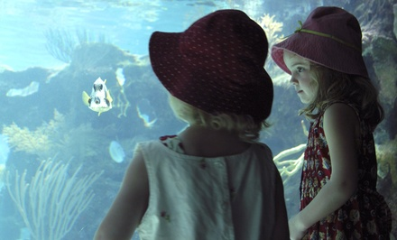 Ripley's Believe It or Not!, Oregon Undersea Garden, and The Wax Works for Two or Four at Mariner Square (Up to 51% Off)