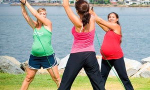 fit 4 mom - Bryan: Four Weeks of Mommy and Me Dance Classes or Fit4Baby Classes at Fit 4 Mom (Up to 56% Off)