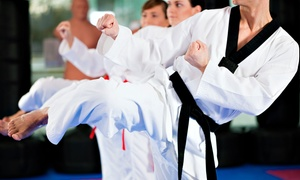 U.S. TaeKwonDo College: $29.99 for One Month of Unlimited Tae Kwon Do Classes with Uniform and Belt at U.S. TaeKwonDo College ($200 Value)