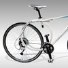 RoundTail Hybrid Delia Bike