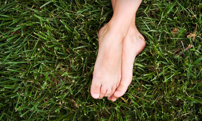 Lush Eco Lawns - Duncan: $99 for an Aeration and Liming Package from Lush Eco Lawns ($300 Value)