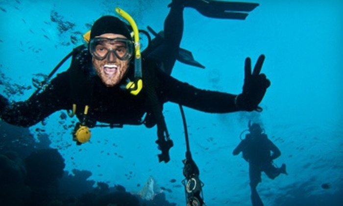 The Scuba Shop - Mesa: PADI Open-Water-Certification Course for One or Two, or Discover-Scuba Class for Two at The Scuba Shop (Up to 65% Off)