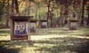 Kent County Conservation League - Northeast Grand Rapids: Archery for Two or Four at Kent County Conservation League (Up to 63% Off)