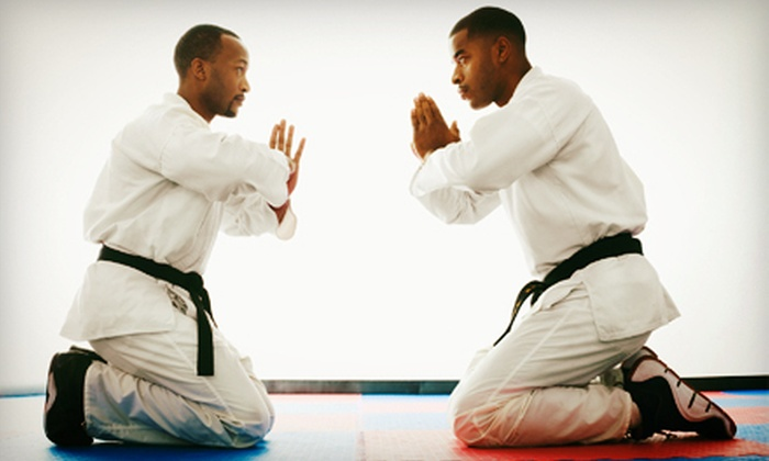 Defensive Arts Training Centre - Lakeshore: 5 or 10 Brazilian Jujitsu or Mixed Martial Arts Classes at Defensive Arts Training Centre (Up to 70% Off)