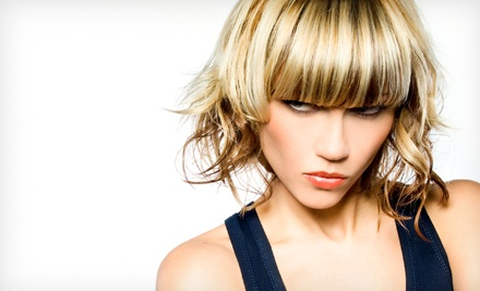 Haircut, Conditioning, and Style with Optional Color or Partial or Full Highlights at Sheared Wings (Up to 58% Off)