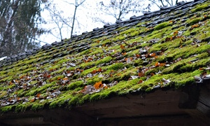 The Moss Busters: $99 for Roof Moss Treatment for Up to 2,000 Square Feet from The Moss Busters ($450 Value)