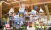 Up to 50% Off at Fort Rapids Indoor Waterpark