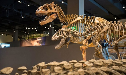 Natural History Museum of Utah Entry for Two, Four, or Six (Up to 50% Off)