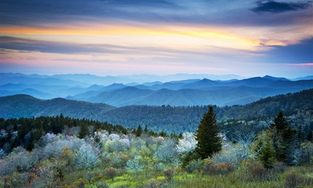 Stay with A-1 Vacation Rentals in Helen, GA, with Dates into May
