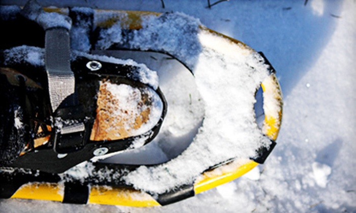 Toronto Adventures Inc. - Toronto: $25 for a Two-Hour Introductory Snowshoe Lesson and Tour from Toronto Adventures Inc. ($49.95 Value)