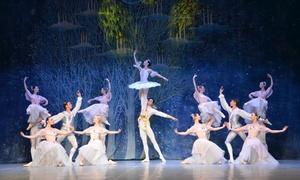"""Ovation Event: 2x """"Nussknacker"""" mit dem St. Petersburg Festival Ballett im Dez. und Jan. in Düsseldorf und Bremen (bis zu 46% sparen)"""