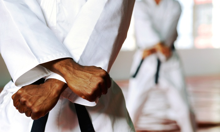 United States Karate Academy - Multiple Locations: One, Three, or Five Karate Classes at United States Karate Academy (Up to 64% Off)