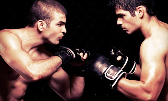 Gilroy Health & Fitness - Gilroy: 5 or 10 Mixed Martial Arts Classes or Three Months of Unlimited MMA Classes at Gilroy Health & Fitness (Up to 89% Off)