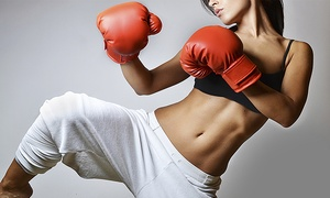 New York Black Belt Center: One or Three Months of Kickboxing Classes with Free Boxing Gloves at New York Black Belt Center (Up to 65% Off)