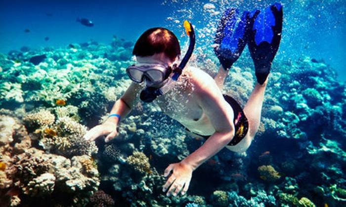 Island Magic Catamaran - Honolulu: Snorkeling Cruise for Adult or Child or Adult Sunset Cruise from Island Magic Catamaran (Up to 52% Off)