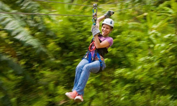 Rainforest Adventures - Castries: Canopy Zipline Tour from Rainforest Adventures in St. Lucia