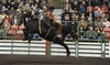Heritage Ranch Rodeo - Rexall Place: Heritage Ranch Rodeo at Edmonton EXPO Centre on November 5 or 6 at 2 p.m. (50% Off)