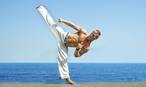 Tryumph Academy Of Martial Arts: $99 for $300 Worth of 3-Month Martial-Arts Membership — TRYUMPH ACADEMY of Martial Arts Page